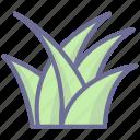 grass, nature, vegetation icon