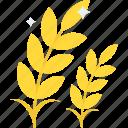 barley ear, organic farming, rye, wheat, whole grains icon