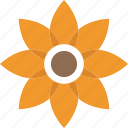 blossom, daisy, floral, nature, spruce flower icon