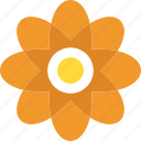 dahlia, floral, flower, natural blossom, spring season icon