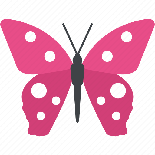 Butterfly, garden insects, insect, moth, spring season icon - Download on Iconfinder