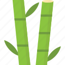 bamboo shoots, foliage, raster, tranquil tree, tropical plant icon