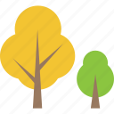 aspen, deciduous, forestry, photosynthesis, trees icon