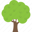apple tree, deciduous tree, farmhouse, forestry, fruit tree icon