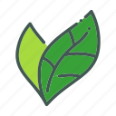 eco, ecology, leaf, nature, organic icon