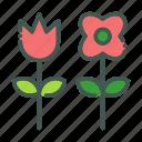 eco, ecology, flower, nature, organic