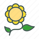 eco, ecology, nature, organic, sun flower icon