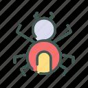 eco, ecology, nature, organic, spider icon