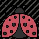 ladybug, insect, nature, ecology icon