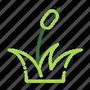 eco, ecology, nature, organic, plant icon