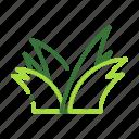 eco, ecology, grass, nature, organic