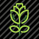 eco, ecology, nature, organic, rose icon