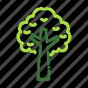 eco, ecology, nature, organic, tree icon