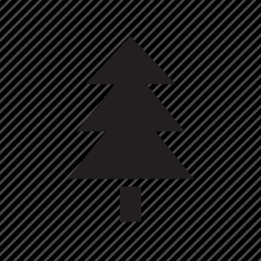 christmas, fir, nature, tree icon