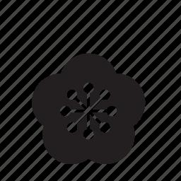 bloom, flower, lotus, nature icon