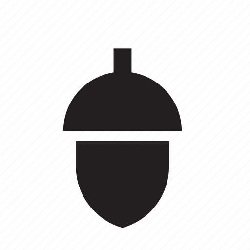 acorn, nature icon