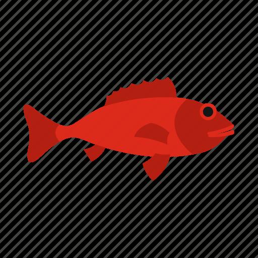 aquatic, fish, fishing, river, seafood, tail, tropical icon