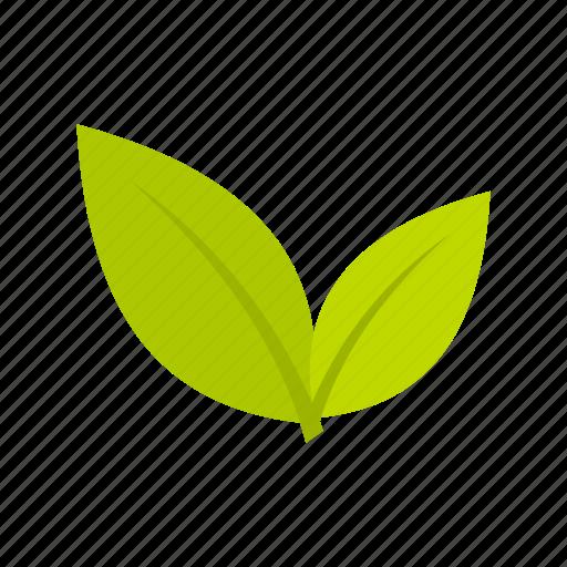 decoration, eco, environmental, fresh, freshness, leaf, plant icon