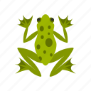 amphibian, animal, frog, graphic, nature, wild, wildlife icon
