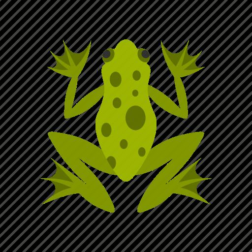 amphibian, animal, frog, graphic, nature, wild, wildlife icon