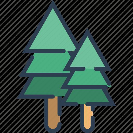 chrismast, ecology, leaf, nature, plant, tree icon