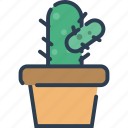 cactus, ecology, nature, plant, pot, tree icon
