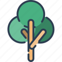 ecology, leaf, nature, plant, tree icon