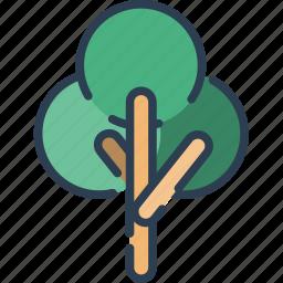 ecology, leaf, nature, plant, tree icon