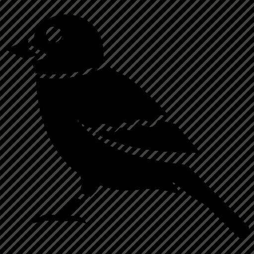 bird, chick, flying bird, fowl, sparrow icon