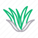 forest, green, nature, park, plant icon