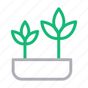 green, growth, nature, park, plant icon