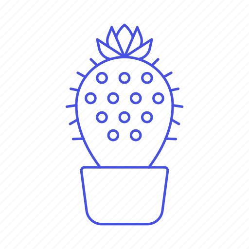 cactus, flourishing, flower, flowering, flowers, nature, on, plants, pot, spines, succulent, thorns, top icon