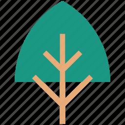 ecology, environment, evergreen, nature, tree icon