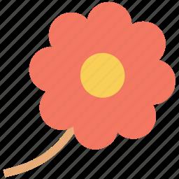 bloom, blossom, daisy, flower, macro flower, sun flower icon