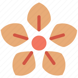 blossom, daisy, flower, flower and leaf, flower leaf, macro flower, nature and ecology icon