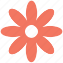 bloom, daisy, decoration, eco leaf, flower, petals, plant icon