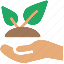 agriculture, bio, eco, ecology, environment, hand leaf, plant, protection