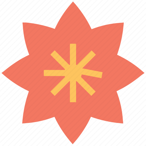 bloom, blossom, daisy, flower, flower and leaf, macro flower icon