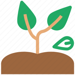 agricultural, ecology, green plants, plant, plantae icon