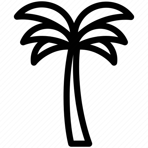 arecaceae, date palm, date tree, palm, palm tree, tree icon