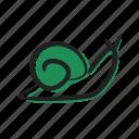antennas, boneless, carapace, crawling, slow, slug, snail icon
