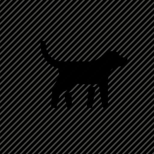 animal, canine, dog, nature, pet icon