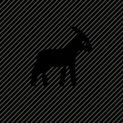animal, goat, horns, nature, ram icon