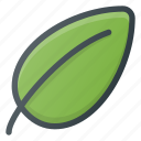 bio, eco, leaf, nature icon