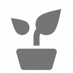 leaves, nature, plant icon