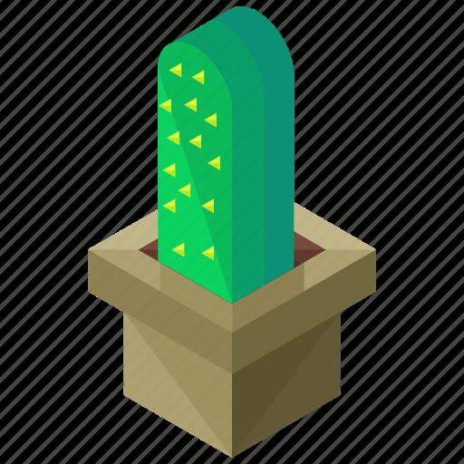 cactus, ecology, elements, nature, square, vase icon