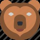 bear, nature, summer