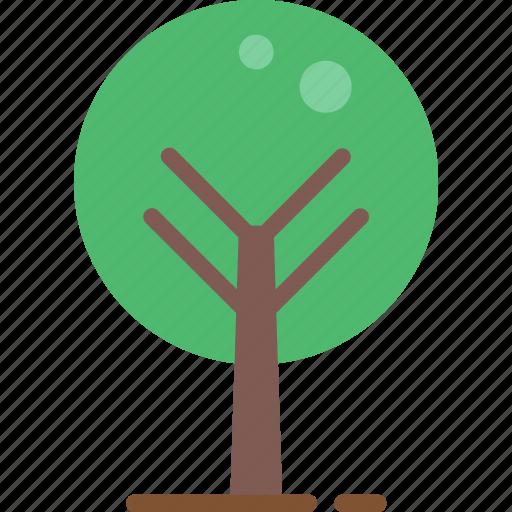 nature, summer, tree icon