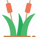 nature, reeds, summer, water icon