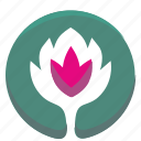 astra, flower, nature, plant icon